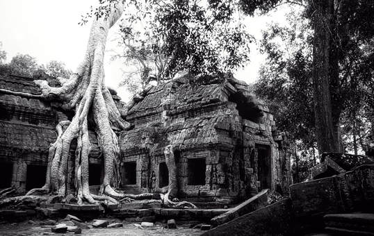 Link to image of Easternmost Gopura of Ta Prohm II, 1993, Ta Prohm, Siem Reap