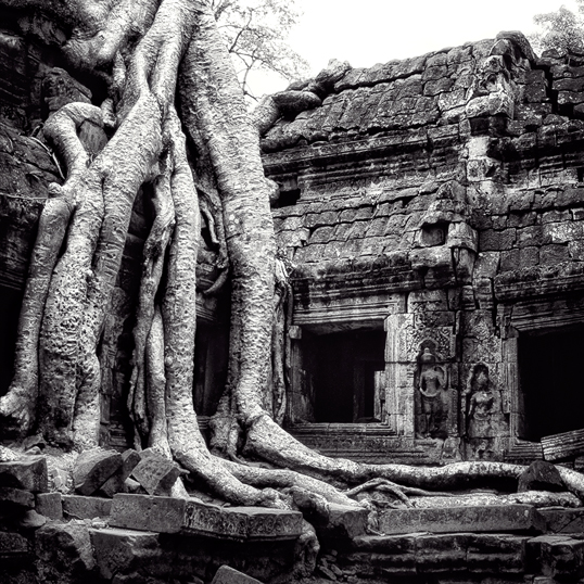 Link to image of Easternmost Gopura of Ta Prohm III, 1993, Ta Prohm, Siem Reap