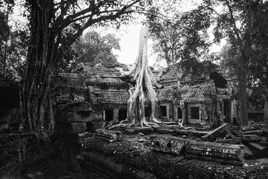 Link to Siem Reap gallery