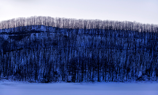 Winter Landscape of Trees Triptych 2