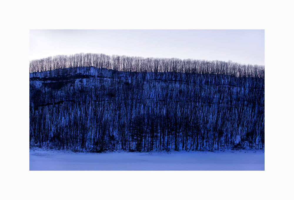 Link to Winter Landscape of Trees Triptych II image