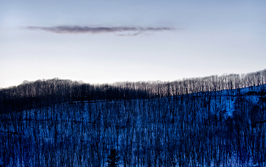 Winter Landscape of Trees Triptych 1