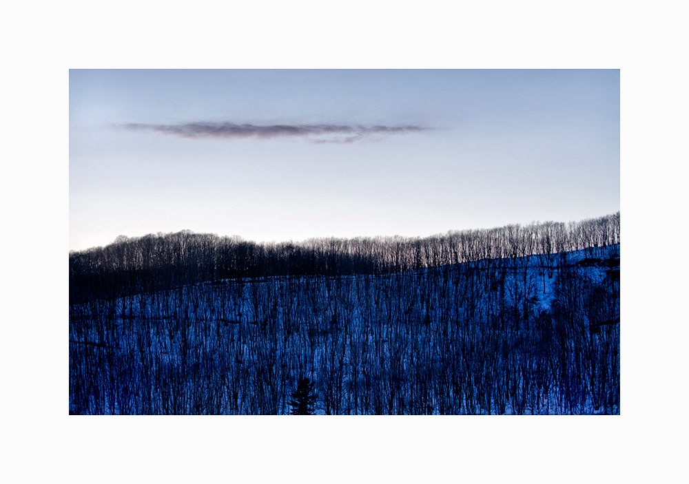 Link to Winter Landscape of Trees Triptych I image