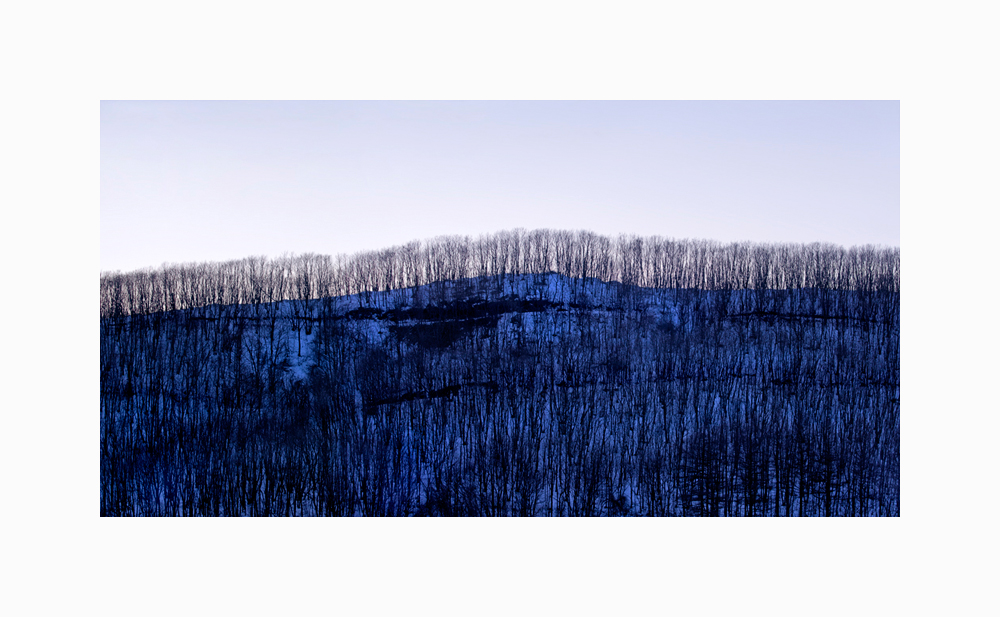 Link to Winter Landscape of Trees Triptych III image