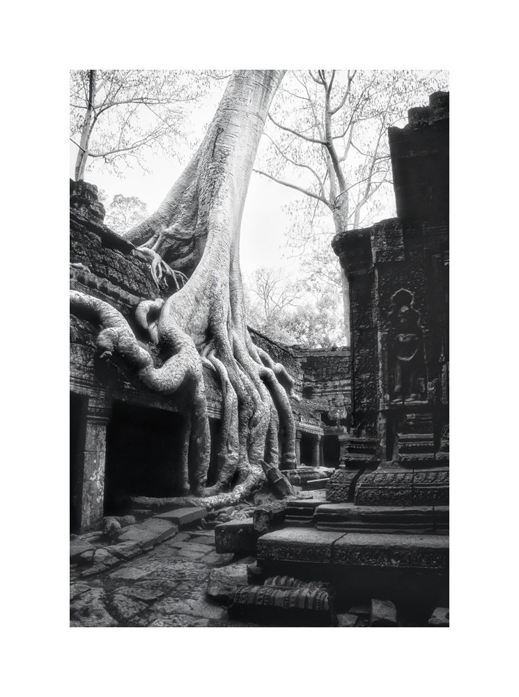 Fine art black and white image of Central Sanctuary of Ta Prohm I, 1993, Siem Reap