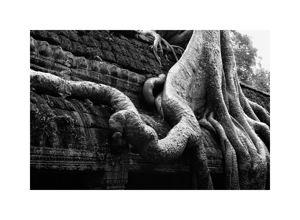 Fine art black and white image of Central Sanctuary of Ta Prohm II, 1993, Siem Reap
