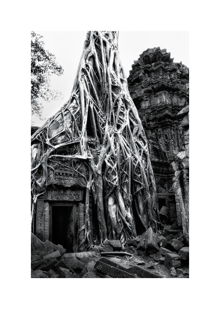 Fine art black and white image of Inner Sanctuary Tree and Door, Ta Prohm, 1993, Siem Reap